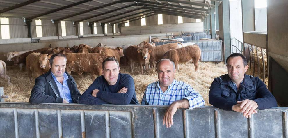 Cooperativa apuesta por la carne de Navarra